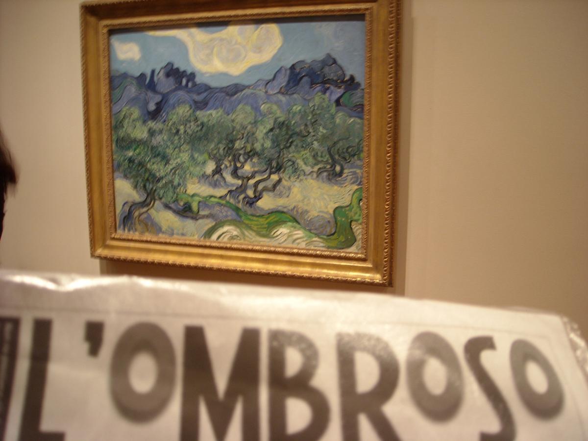 073_newyork_museo MoMA_The Olive Trees_van Gogh_7